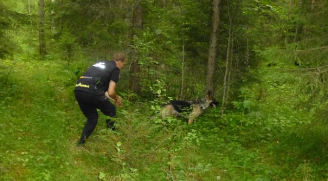BBHK har Patrullhundstävling 2016-05-29