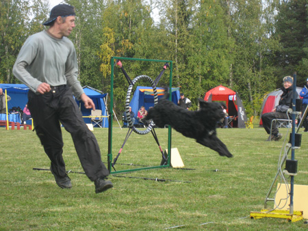Fortsättningskurs i agility