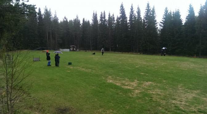 Patrullhundstävling 2015-05-31